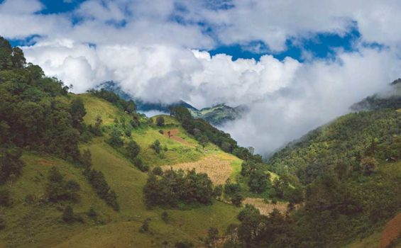Querétaro's Sierra Gorda.