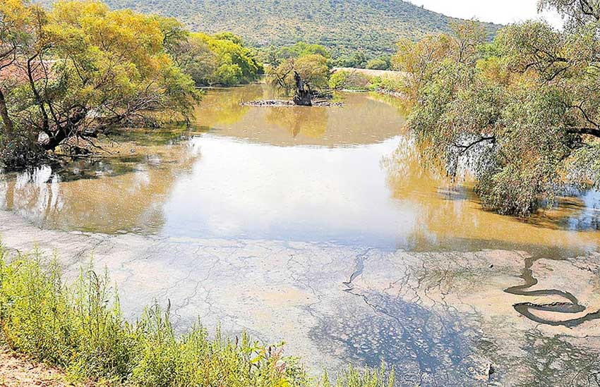 The Tula river: 'a channel for wastewater.'