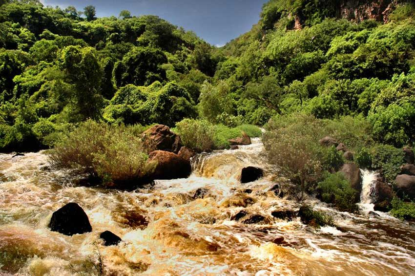 Frothing river in Tamara canyon.