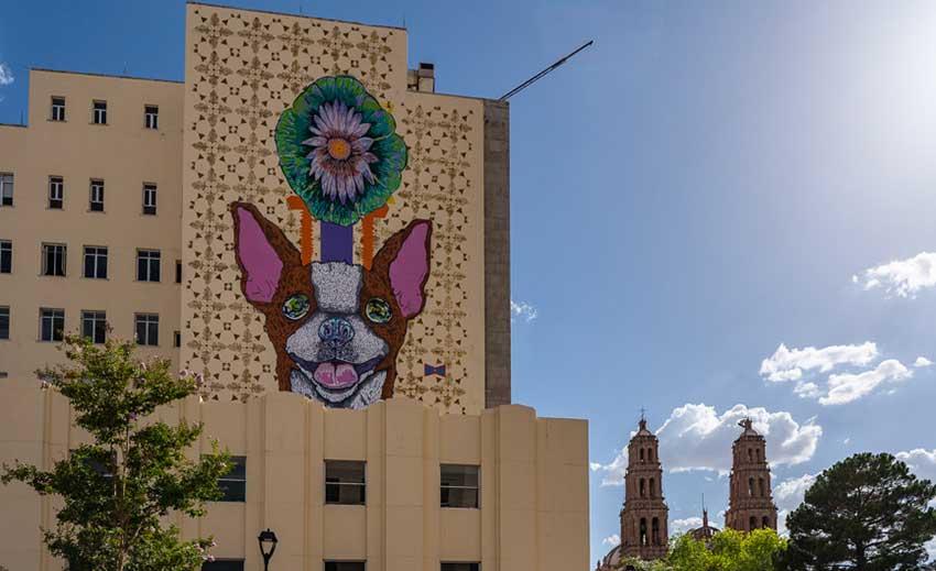 chihuahua dog mural
