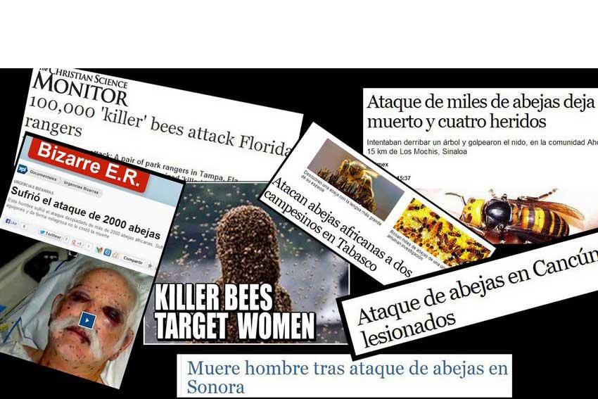 6—Headlines
