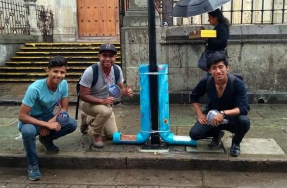 The collective and one of their Oaxaca dog feeders.