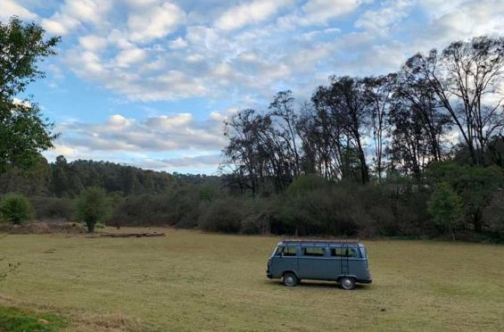 A Mexico City VW bus fanatic offers roadtrips and even weddings in the iconic van.