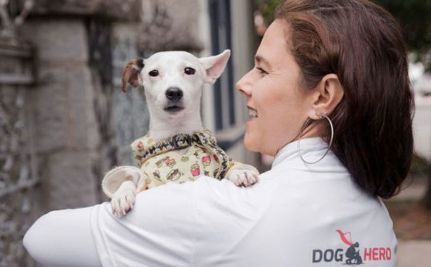 DogHero provides an accommodation service for pet owners.