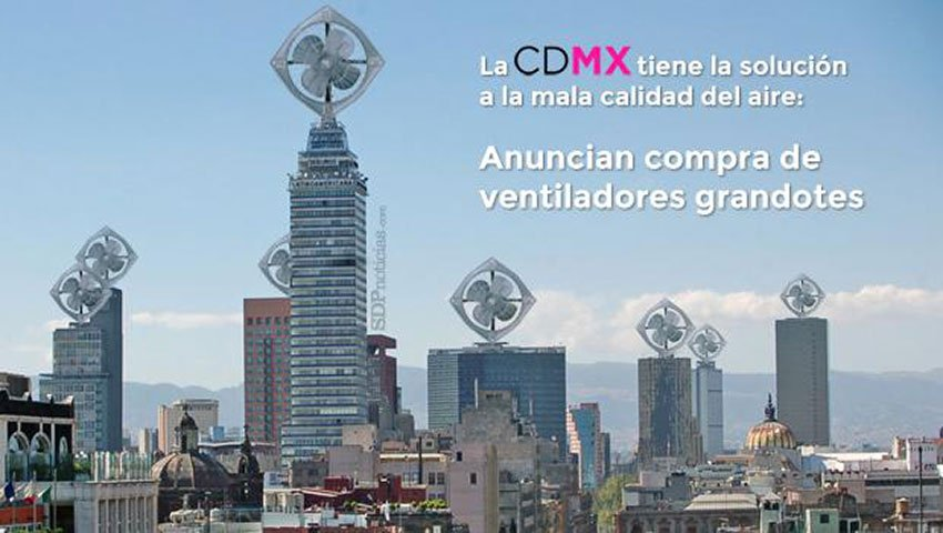 mexico city fans
