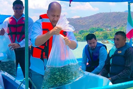 Jalisco Governor Alfaro prepares to release young fish into Lake Chapala.