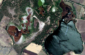 8—-Google-Map-of-Los-Negritos-Lake