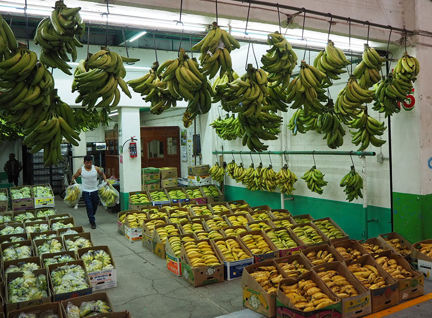 Turns out the banana varieties go quite deep at the Central de Abasto.