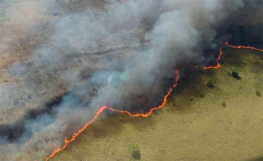 The wildfire advances across the Sian Ka'an Biosphere Reserve.