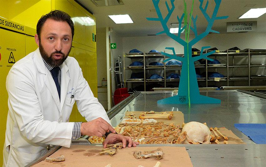 UNAM's Pineda: 'better cadavers.'