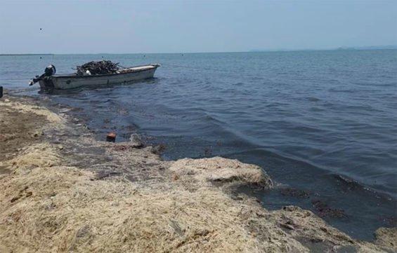 Sewage has contaminated Juchitán's Laguna Superior.