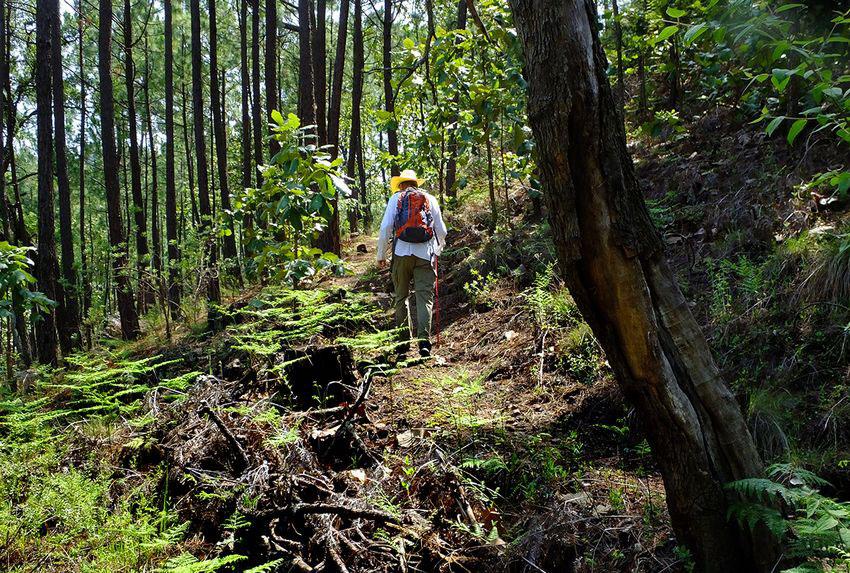 5—GR-Trail-to-La-Campana