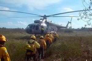 Firefighters have been busy in the Sian Ka'an Biosphere Reserve.