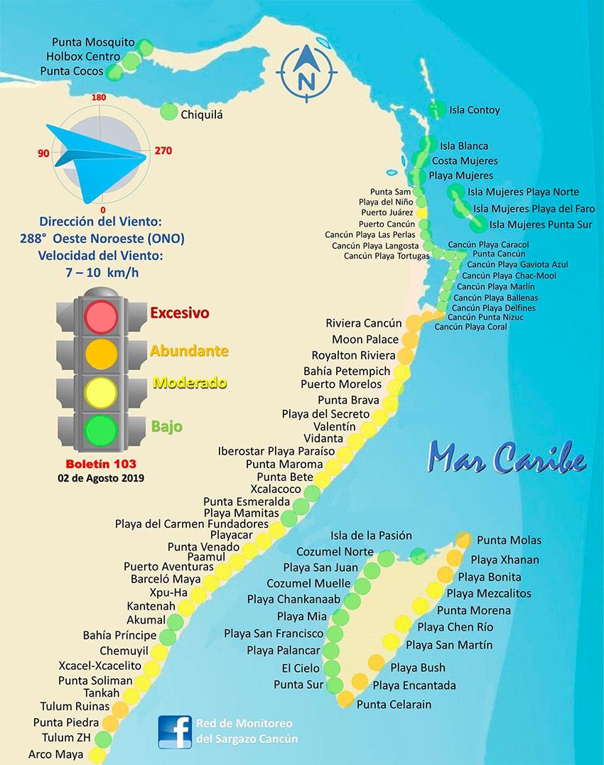 sargassum map