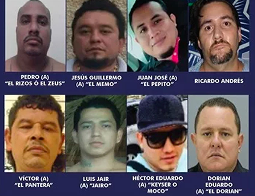 The eight most wanted in Playa del Carmen.