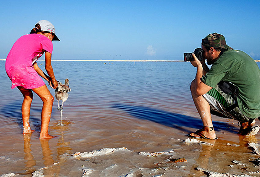 Filming the release of a newly tagged flamingo in Yucatán.