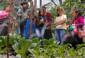 6—Garden-in-Chiapas-xching-xperiences
