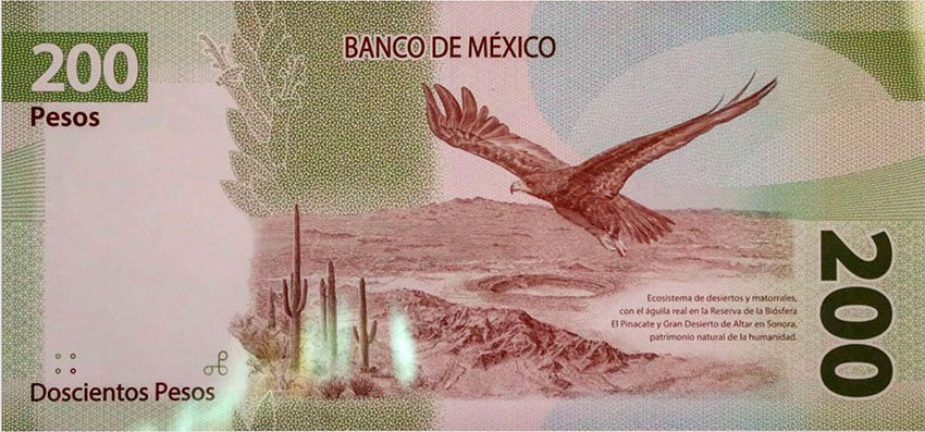 El Pinacate biosphere reserve in Sonora is featured on the reverse side of the new banknote.