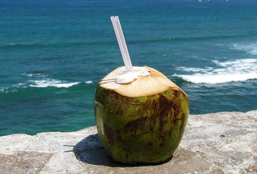 Fresh coconut — the taste of the tropics!