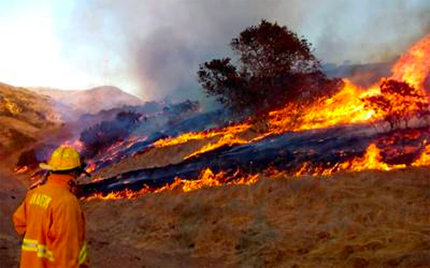 About 50 fires have been reported in four municipalities.