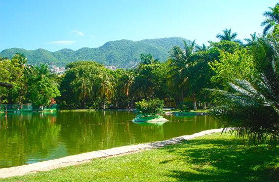 The Guerrero city's green lung.