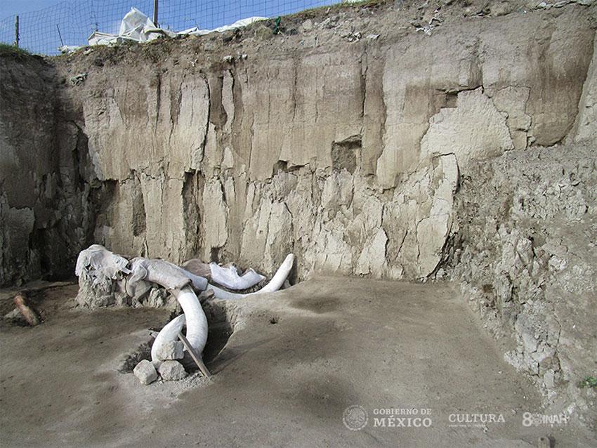 Mammoth remains near Tultepec, México state.