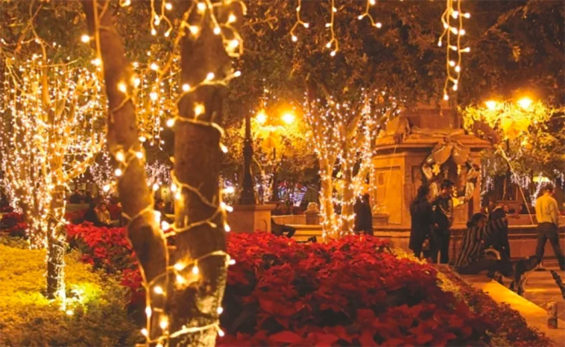 Christmas lights will adorn the city of Querétaro beginning Monday.