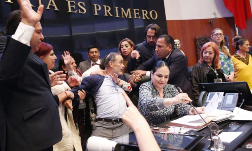 A commotion in the Senate during the swearing in of human rights chief.