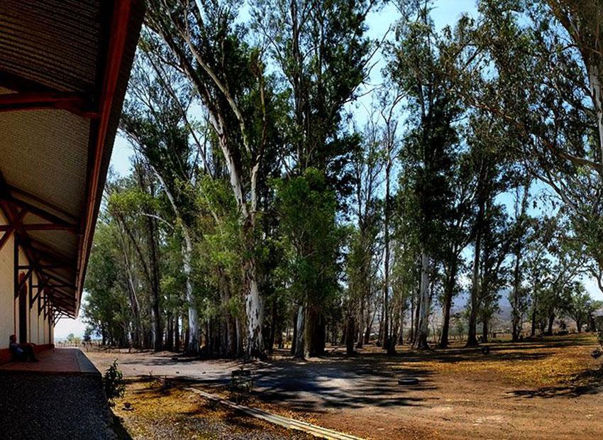2—b-San-Marcos-Station-n-Eucalyptus-Grove