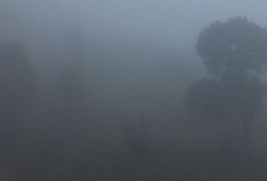 2—bsm-Foggy-View