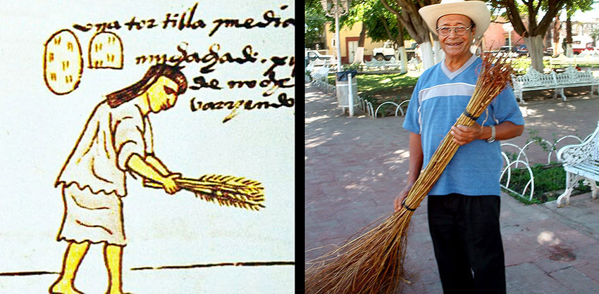 Continuity: a plaza sweeper in Teuchitlán, Jalisco, carries on an ancient tradition, with the same kind of broom.