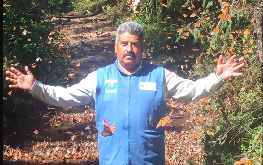Butterfly sanctuary administrator Gómez.