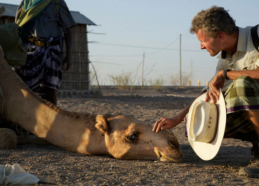 In Ethiopia, A'urta (Traded for a Cow) gets a reassuring head scratch.