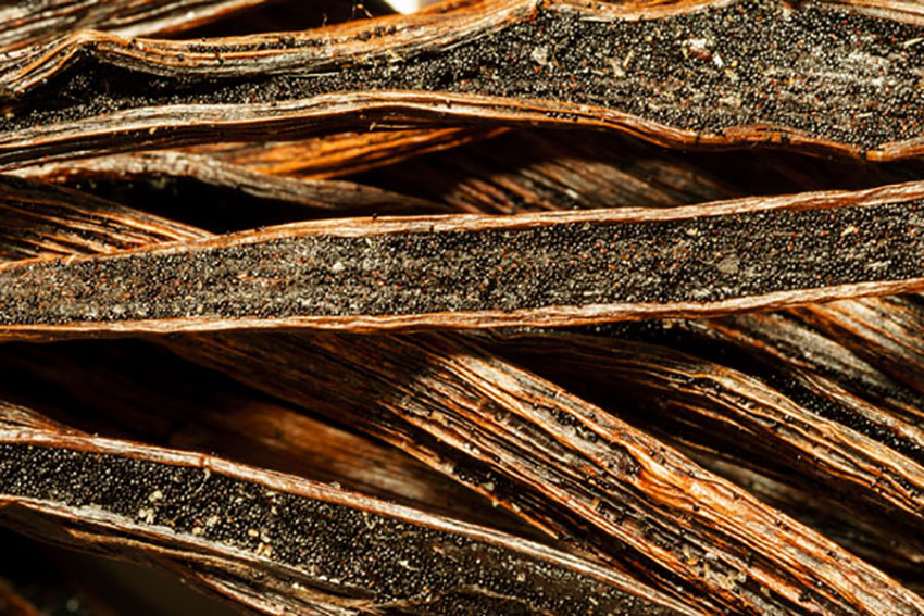 Vanilla beans inside dried pods.