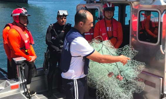 The net in which the whale was entangled.