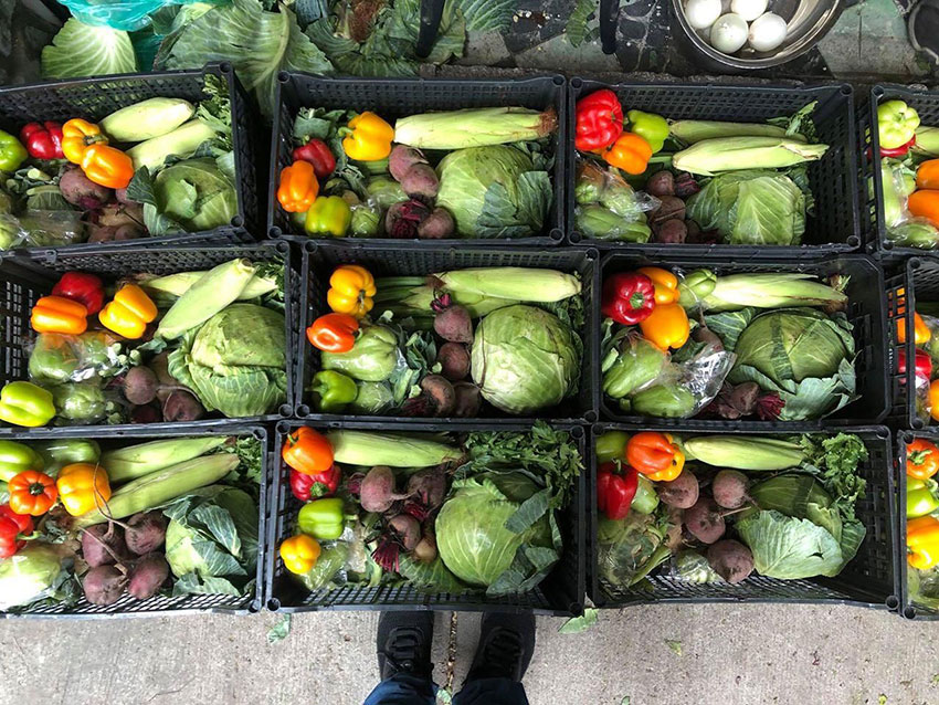 The Weekly Huacal, a selection of vegetables, fruits and herbs from vendors in the Central de Abasto market.