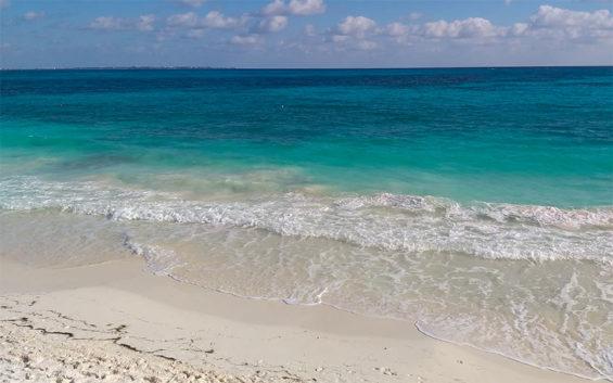 A sargassum-free beach in Quintana Roo.