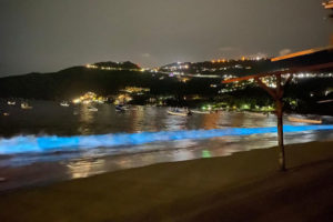 Biolumninescence at an Acapulco beach last month.
