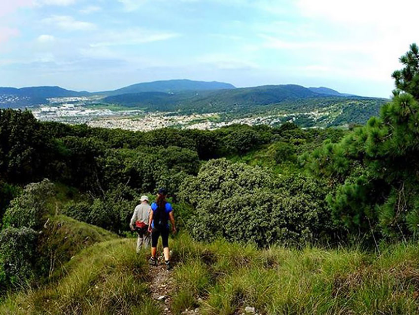Hikers get a glimpse of Guadalajara while traversing the pine and oak forest.