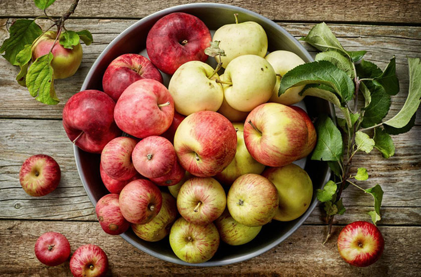 Imported apples are readily available; Mexican varieties at certain times of the year.