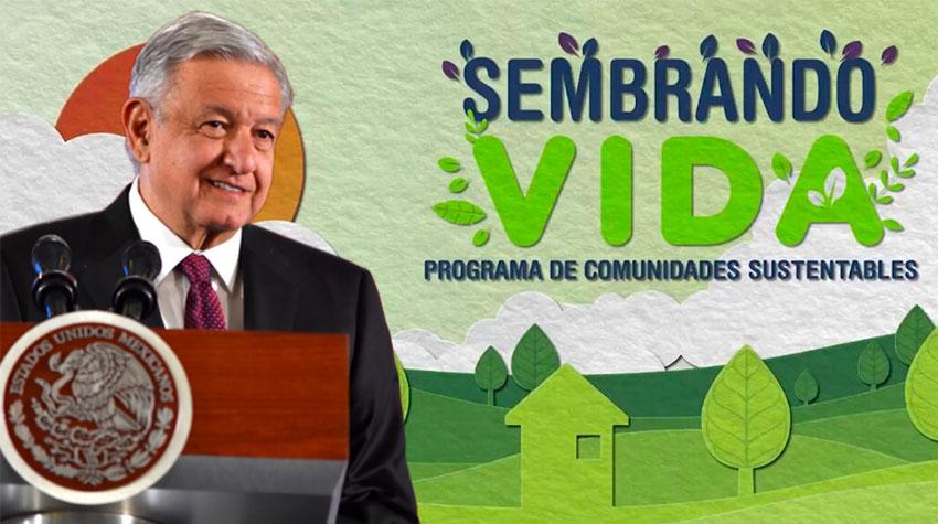 Sembrando Vida has been touted by President López Obrador as a major job creation program.