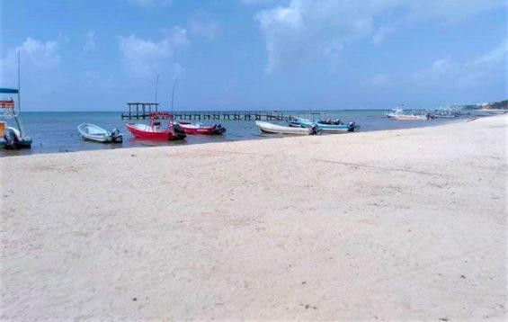 A sargassum-free beach Friday in Playa del Carmen.
