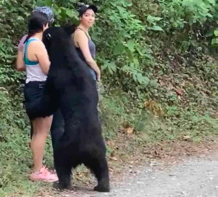 Women remain still as a black bear checks them out in a park in Nuevo León.