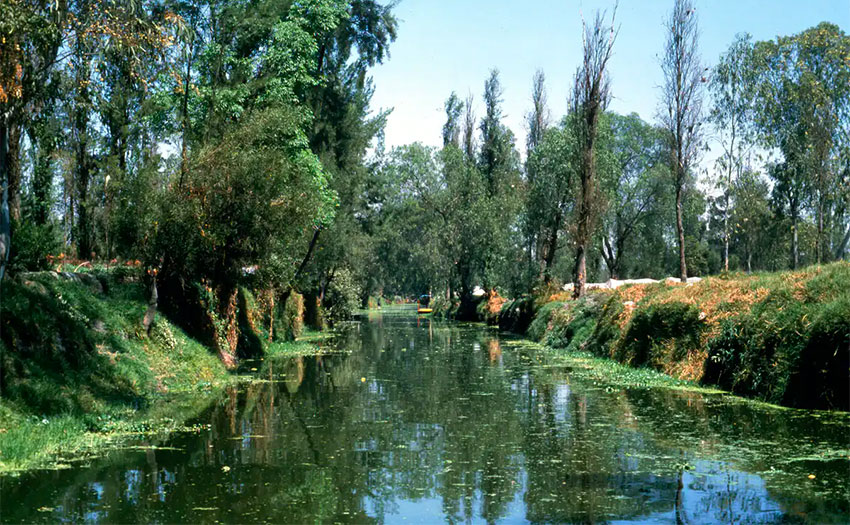 Canals in Xochimilco, a part of Mexico City that retains its ancient waterways.