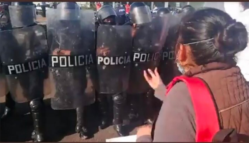 Riot police were called in to control Guanajuato march.