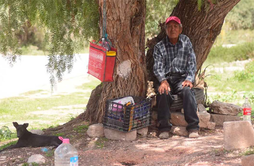 Rodríguez sells his pulque from under the shade of a tree in Atotonilco.
