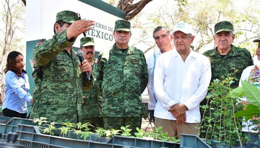 Military experts discuss tree propagation with the president.