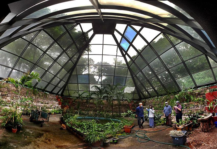 10—-sm-Orchidarium