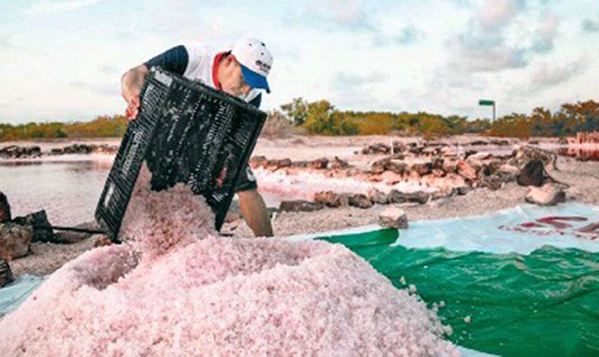 Harvesting Mayan Pink Salt.