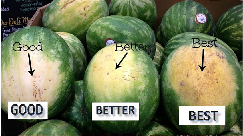 One of the things to look for in a good watermelon.